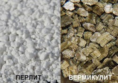 Чем отличается перлит от вермикулита. Вермикулит и перлит: в чем отличия?